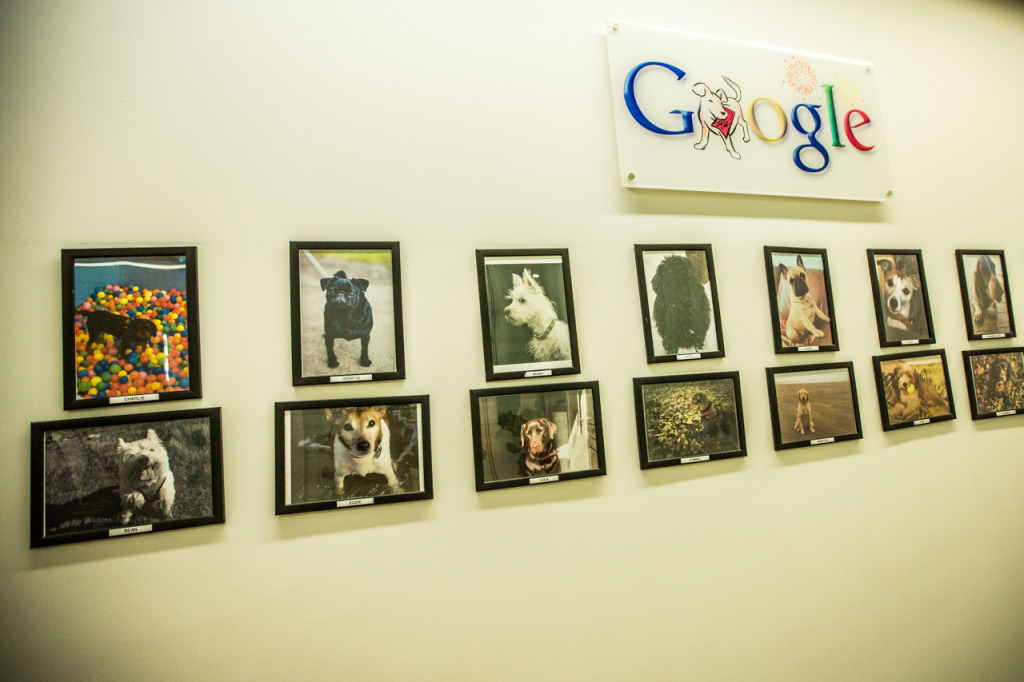 google-19