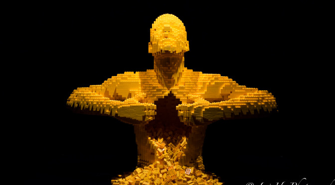 The-Art-of-the-Brick-13