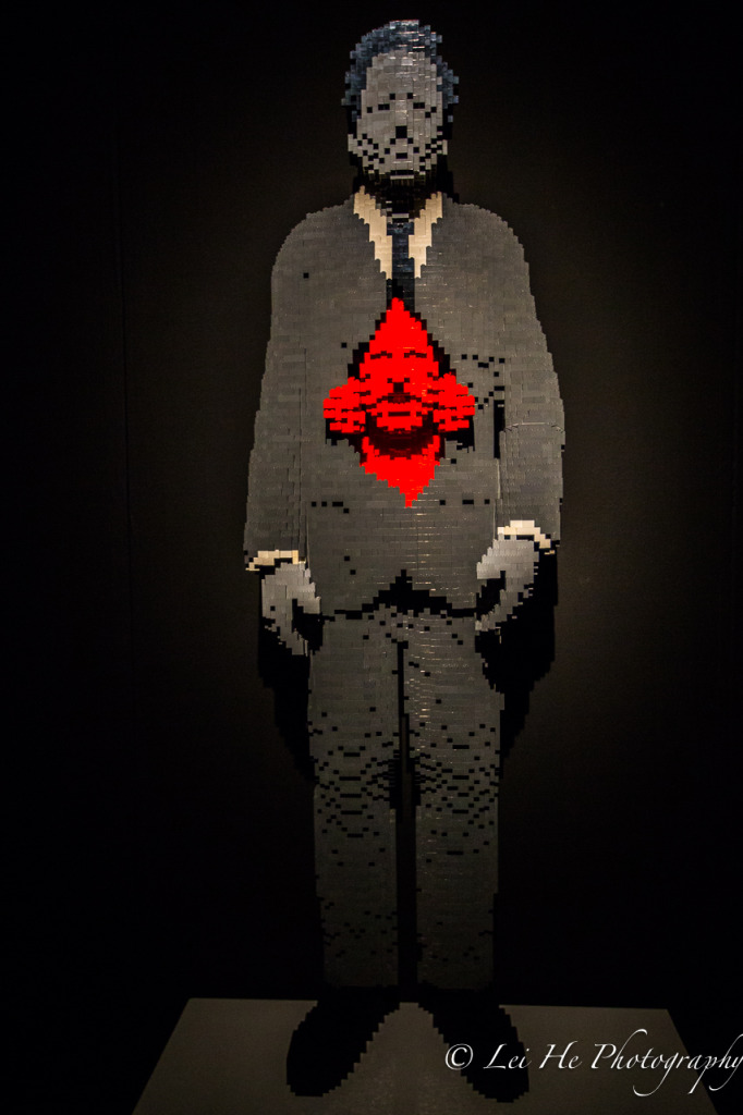 The-Art-of-the-Brick-Self